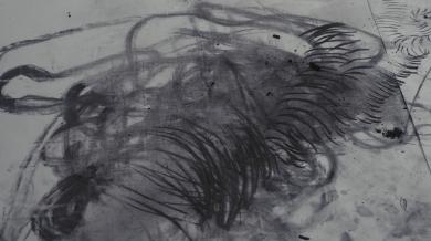 desmenuzarse_Museo Tamayo_fotografia_Maya Castrejon (89)